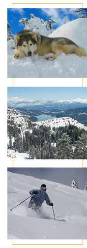 donner_summit_vertical